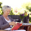 Senior woman reading book — Stock Photo #31149359