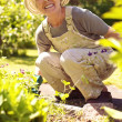 Happy senior woman gardening — Stock Photo
