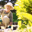 Happy elder woman working in her garden — Stock Photo #31503951