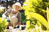Happy elder woman working in her garden — Stock Photo