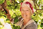 Elder woman working in her farm smiling — Stock Photo