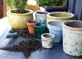 Terracotta plant pots on counter — Stock Photo
