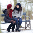 Bestfriends in a Serious Conversation while Sitting on a Bench — Stock Photo #32353413