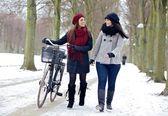 Dos amigos disfrutando de un paseo por un parque de invierno — Foto de Stock