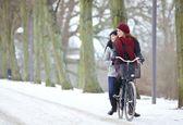 Mulheres alegres, andando de bicicleta juntos — Foto Stock