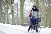 Bike Ride in the Winter Park — Stok fotoğraf