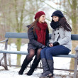 Two Bestfriends Sitting on a Park Bench — Stock Photo
