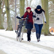 Fashionable Ladies Walking in a Cold Park — Stock Photo