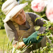 Senior woman fixing up her garden — Stock Photo