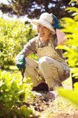 Happy older woman gardening — Stock Photo