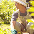Senior woman looking away and smiling while gardening — Stock Photo
