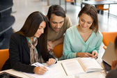 Students engrossed in their studies at library — Stock Photo