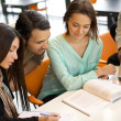 Group of students studying in a library — Stock Photo