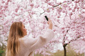 Young woman shooting blossom flowers with her mobile phone — Stock Photo