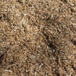 Sawdust — Stock Photo #23060236