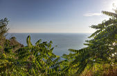 View over the sea — Stock Photo
