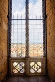 Window over Firenze — Stock Photo