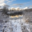 Winter scene with lake — Stock Photo