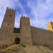Stock Photo: Sadaba castle