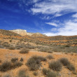 Arid landscape — Stock Photo