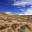 Stock Photo: Arid landscape