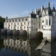 Chenonceau — Stock Photo #13152463