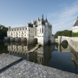 Chenonceau — Stock Photo #14576785