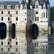 Chenonceau — Stock Photo #15242495