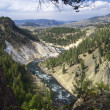 Yellowstone — Stock Photo #15654405