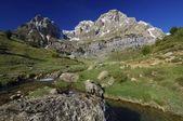 Pyrenean landscape — Stock Photo