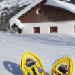 Snowshoeing — Stock Photo