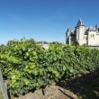Saumur — Stock Photo