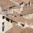 Roofs — Stock Photo #24821207