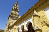 Mesquita de Córdoba — Fotografia Stock