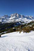 Pyrenees — 图库照片