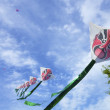 Chinese kites — Stock Photo