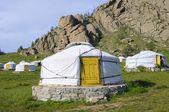 Mongolská gers — Stock fotografie