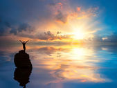 Muž na osamělé skály v oceánu — Stock fotografie