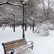 Benches in park — Stock Photo #17412817