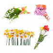 Set of beautiful  bouquet — Stock Photo