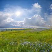 Nubes y prado de la flor azul — Foto de Stock