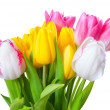 图库照片: Bouquet of yellow, white and pink tulips