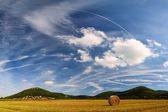 Summer landscape with harvest field — Stock Photo