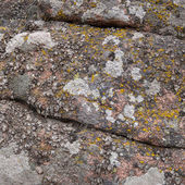 Pattern on a red granite stone — Stock Photo