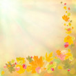 Stock Photo: Colorful autumn background-2