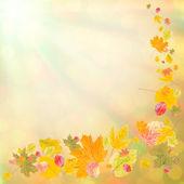 Kleurrijke herfst achtergrond-2 — Stockfoto