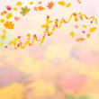 Autumn background for design II — Stock Photo