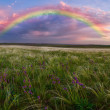 Spring landscape with rainbow — Stock Photo