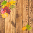 Leaves on wooden boards — Stock Photo #30731391
