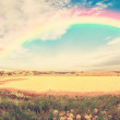 Vintage panoramwheat field — Stock Photo #36565985
